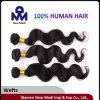 Estensione brasiliana dei capelli umani di vendita del Virgin allentato caldo dell'onda