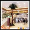 Palmeira artificial da fibra de vidro plástica decorativa interna da planta