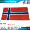 Banderas europeas de Noruega del campeonato de la UEFA (M-NF05F09048)
