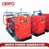 groupe électrogène diesel diesel de Genset de la nouvelle centrale électrique 350kVA électrique