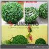 人工的な塀のプラスチック緑の葉の球の塀