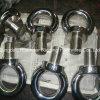 Boulon et écrou d'oeil DIN580 et DIN582 d'acier de Stainess, JIS 1168 et JIS 1169