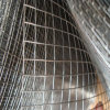 Galvanisiertes Welded Wire Mesh in Rolls