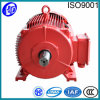 Electric 3 단계 Motor AC Synchronous Motor Ygt-225s~315s