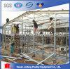 De hete/Koude Apparatuur van het Landbouwbedrijf van het Gevogelte van de Kip van de Galvanisatie