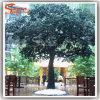 중국 공급 호텔 훈장을%s 인공적인 큰 소나무 인공적인 소나무