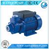 Vp define a bomba para a irrigação agricultural com velocidade 2850rpm