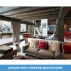 Späteste verschiedene Modell-Rücksortierung-Gebäude-Suite-Möbel (SY-BS158)