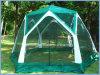 أسرة حديقة [غزبو] يركّب شبكة خيمة