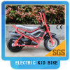 Миниое Electric Bike 200With 250W /350W