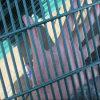 Barrière de haute sécurité soudée 358 par PVC