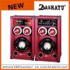 2.0 Altoparlante di Bluetooth di karaoke del sistema di PA DJ (XD6-6015)