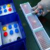 Kit du Heme Oxygenase-1 (HO-1) Elisa de rat