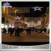 Skyline da decoração do Natal do diodo emissor de luz do feriado da qualidade superior para a rua
