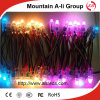 Festival를 위한 LED Singel Color Transparent Exposed Light String