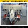 Manufatura do Transplanter do arroz de Yanmar Ap6 2zqs-6 Waling para a venda