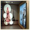 Cadre en aluminium d'éclairage LED de tissu personnalisé par prix bas (100*180cm)