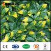 Il colore giallo Anti-UV della decorazione domestica lascia la parete artificiale delle piante esterna