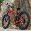 Pedal unterstützte Schnee-elektrisches Fahrrad Rseb-505
