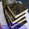 Mariene Plywood 1220*2440*18mm voor Constrution