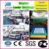 Polycarbonat PC Höhlung-Blatt-/Sonnenschein-Vorstand-Strangpresßling-Maschine