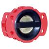 Задерживающий клапан двойной плиты резиновый покрытый