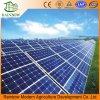 Serra fotovoltaica con il sistema idroponico per agricolo