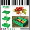 Caisse en plastique de fruits et légumes de panier en plastique de mémoire