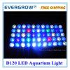 Lumière de D120W pour l'aquarium, lumière LED d'aquarium de DIY