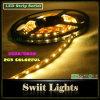 Striscia flessibile 12V 3528 5050 del LED (SW-DD-1003)