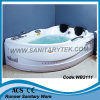 Bañera del torbellino/bañera del masaje (WB2111)
