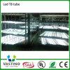 Luz elevada direta do tubo do diodo emissor de luz da venda 120cm 18W Effeciency da fábrica