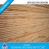 Феноловое WBP Plywood с твёрдой древесиной Core и Bintangor Veneer