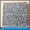 Azulejos grises del granito de G641 Georgia para el suelo exterior y pavimentar