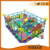 Children merveilleux Indoor Playground par Vasia (VS1-2136A)