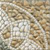 Spuit de Verglaasde Ceramische Tegels van de Vloer in (6D33)