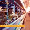 H datilografa as aves domésticas galvanizadas que levantam o equipamento para a galinha
