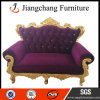 Cuir ou Velvet Fabric Two Seater Sofa (JC-S05)