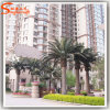 China Factory Price Fiberglass Artificial Outdoor Date Palm Trees