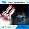 Lâmpadas da cabeça do ponto do diodo emissor de luz do CREE Xhp50, auto lâmpada do automóvel do diodo emissor de luz da cauda H7