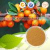 ISO y Kosher 20% flavonas Polvo de extracto de espino amarillo