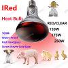 Bulbo de lámpara infrarrojo de calor IR R125 R40 150W 175W 250W