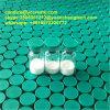 Fragmento esteróide 176-191 do Polypeptide da hormona do crescimento humano para a perda de peso