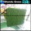 16800tuft高密度人工的なプラスチック草