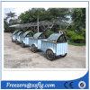 イタリアのアイスクリームは運ぶ販売(セリウム)のためのフリーザーの通りの販売の自転車のショーケースを