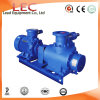 Double Rotary Screw Pump