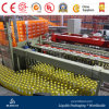 Glasflaschen-Saft Filling&Packing Zeile