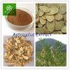 100% Natural Astragalus Membranaceus Root Extract