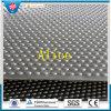 Животная резиновый циновка/циновка волокна резиновый стабилизированная/Носить-Упорные резиновый циновки (GM0421)