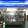 Автоматическая машина завалки сверкная воды бутылки (DCGF24-24-8)
